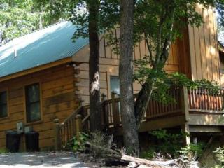 Holly Hollow - your mountain view cabin in Cherry Log - Blue Ridge vacation rentals