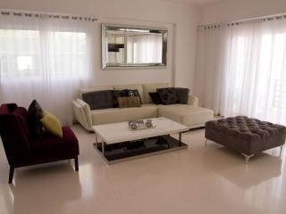 New large apt, upscale Naco area of Santo Domingo - Santo Domingo vacation rentals