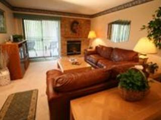 Park Place # 407 - Gatlinburg vacation rentals