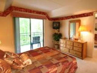 Park Place # 107 - Gatlinburg vacation rentals