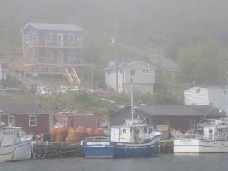 ShoreLark by the Sea Nests - Petty Harbour vacation rentals
