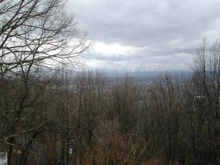 INTOWN 4 Bed/ 4 Bath Cabin- SPECTACULAR SUNSETS - Asheville vacation rentals