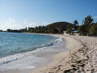 Loveliest Beachfront Condo -Tropical Delight - East End vacation rentals