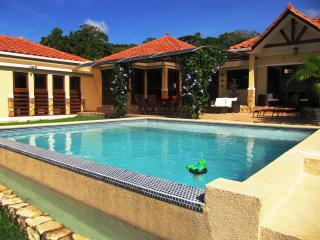 Gorgeous Mountain Villa – 50 mn from Panama City - Panama City vacation rentals