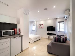 Fabulous new studio apt. in Baka (no stairs!) - Jerusalem vacation rentals