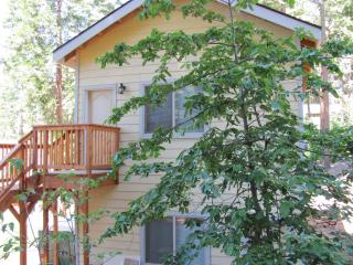 Yosemite Woods Duplex Lower Unit - Family Friendly - Yosemite National Park vacation rentals