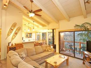 Timber Ridge 48 - Ski in Ski out Mammoth Condo - Mammoth Lakes vacation rentals