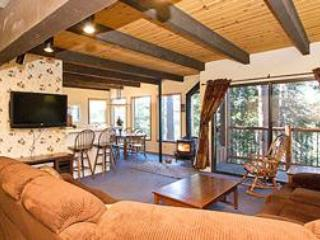Timber Ridge 51 - Mammoth Ski in Ski out Condo - Mammoth Lakes vacation rentals