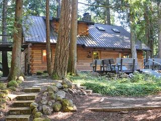 Sandy River Cabin - Fireplace, Pool Table, Dogs OK - Mount Hood vacation rentals