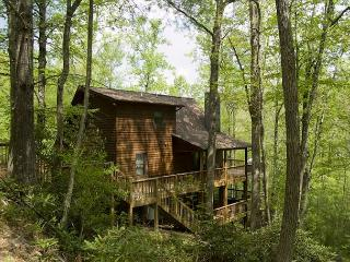 New River Cabin - Hot Tub - Wi-Fi - Fishing - Pool Table and More. - Fleetwood vacation rentals