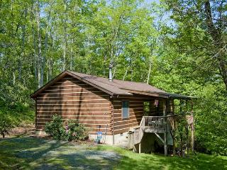 Todd NC Log Cabin Vacation Rental - Near Boone and West Jefferson - Fleetwood vacation rentals