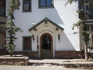 Plaza Lodge #4 - Vail vacation rentals