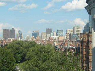 Carlyle Penthouse - Luxury Back Bay 1 Bed + Views - Greater Boston vacation rentals