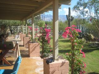 Tucson Central Villa w/ Garden, Guest House & Pool - Tucson vacation rentals