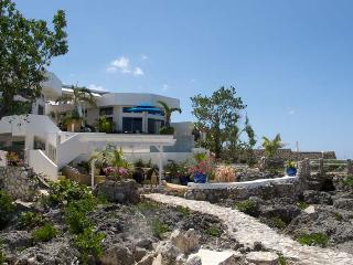 Amedis - Whitehouse vacation rentals