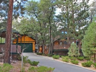 Angels Camp Hideaway - 3 Bedroom Vacation Rental in Big Bear Lake - Big Bear Lake vacation rentals
