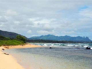 Kauai Ocean Escape *** Affordable Luxury! - Lihue vacation rentals