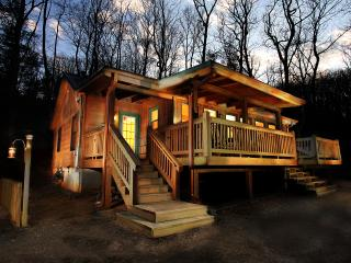 Cherokee Point - Views! Private setting, Hot Tub - Ellijay vacation rentals