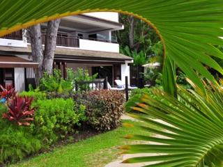Coral Cove 1: Modern Beachfront Apartment - Saint James vacation rentals