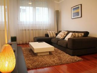 CR100ZR - Apartment Zara - Zagreb vacation rentals