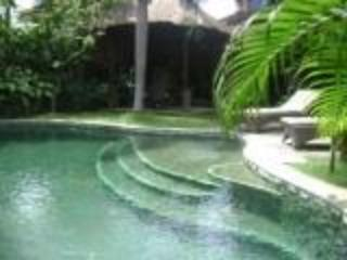 view from pool - 3 bedroom villa in the heart of Seminyak - Seminyak - rentals