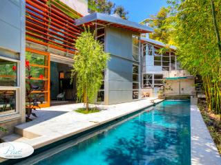 Modern Santa Monica Canyon Villa - Los Angeles vacation rentals
