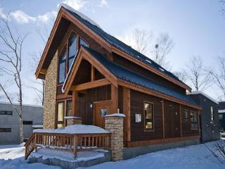 Gouka Lodge luxury four bed ski chalet in Niseko - Niseko-cho vacation rentals