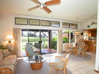 Hawaiian Style Relaxation & VALUE on Maui - Kapalua vacation rentals