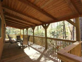 Eagles Nest-Pet friendly! Sunset view! - Sapphire vacation rentals