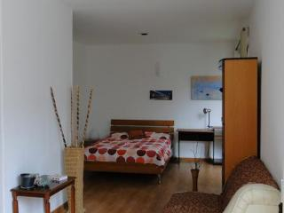 Lovely Studio In San Angel, southern Mexico City - Central Mexico and Gulf Coast vacation rentals