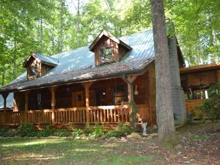Beautiful hand-hewed log cabin on edge of Smokies - Cosby vacation rentals