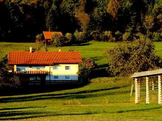 House near Bled: Apartment Vinko - Begunje na Gorenjskem vacation rentals