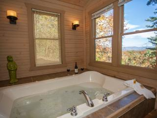 Ananda - Sauna and Mountain View! New Pictures!!!! - North Georgia Mountains vacation rentals