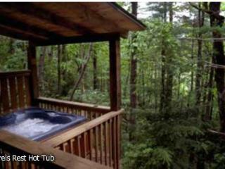 Laurel's Rest - Nestled in Forest with Hot Tub! - Ellijay vacation rentals
