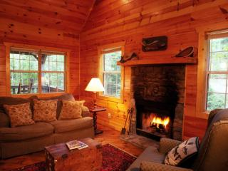 Shanty Creek - Perfect for Romantic Getaway! - North Georgia Mountains vacation rentals