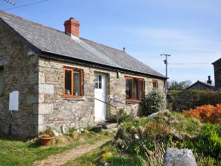 WISTE - Bodmin vacation rentals