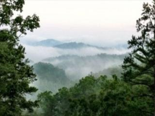 3 Bedroom Theater Cabin With Amazing Views, Covered Decks - Gatlinburg vacation rentals