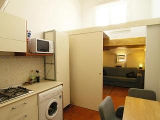 Apartment David - Florence vacation rentals