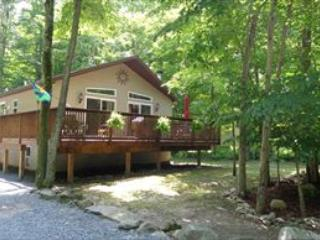 34/1805/18  264 Wyalusing 108358 - Pocono Lake vacation rentals