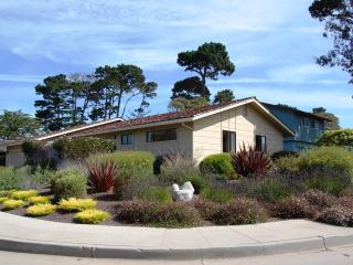 3509 - Walk to the Asilomar Beach & Park! Near 17 Mile Drive! - Pacific Grove vacation rentals