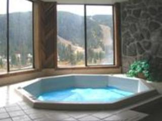 Spacious new hot tub accommodates up to 6, with bay windows facing slopes! - Keystone Condo - private hot tub, walk to slopes! - Keystone - rentals