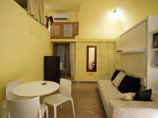 CR655e - Studio Apartment Campo de Fiori - Lazio vacation rentals