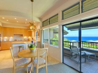 Golden Remodel, Luxury Granite & Marble in Kapalua - Lahaina vacation rentals