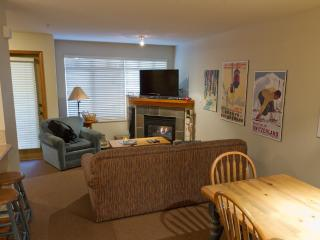 Sunpath 21 a 2 bdrm pet-friendly condo in Whistler - Whistler vacation rentals