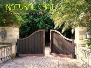 Yoga,Qigong.Natural Chai Organic Farms and Retreat - Hollywood vacation rentals