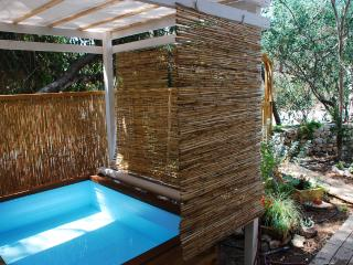 Green Heart , art & nature in middle of Israel - Srigim vacation rentals