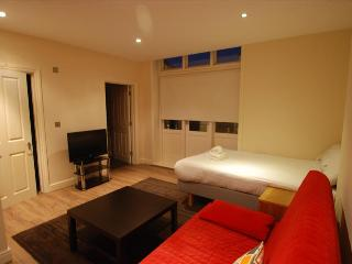 Fairfield Apartments - 0BR - Croydon - 15min to Victoria (2) - London vacation rentals