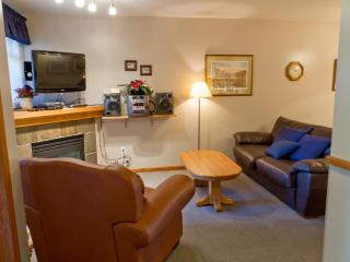 Sunpath 49 a 2 bdrm pet-friendly condo in Whistler - Whistler vacation rentals