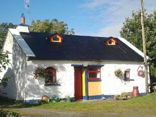 3 Bedroom Cosy Cottage in the heart of Tipperary - Northern Ireland vacation rentals