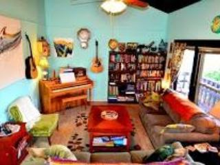 The Zen Den - SXSW ONLY 2/1 in the heart of 78704 - Austin vacation rentals